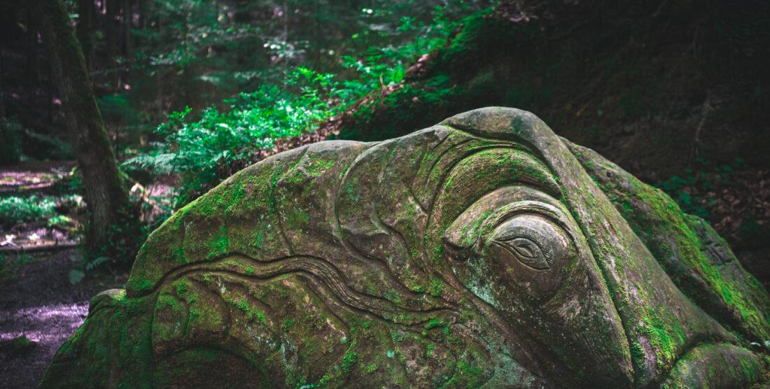 Promenade dans le Vallon Druidique